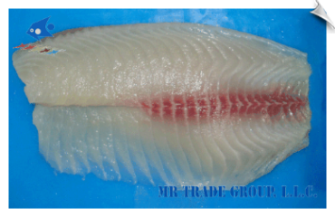 Tilapia Fillet, Non-CO Treated, Deep Skinned with 2/3 Bloodline, Premium Trimmed